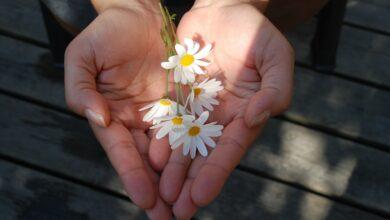 Photo of Nije teško biti fin: Danas je Svetski dan ljubaznosti