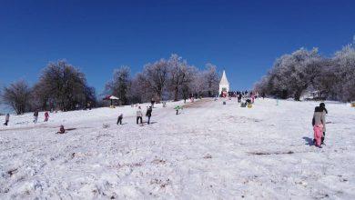 Photo of Nišlije uživale u snegu koji se zadržao na Kameničkom visu