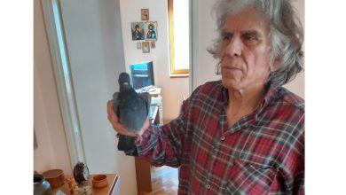 Photo of Nakon što ih je zbrinuo i negovao Nišlija Kamenko Marković pustio dva goluba u prirodu