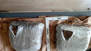 Photo of Uhapšen mladić iz Niša, policija mu u rancu pronašla oko dva kilograma marihuane
