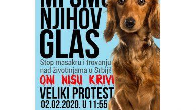 Photo of Protest protiv ubijanja i zlostavljanja životina
