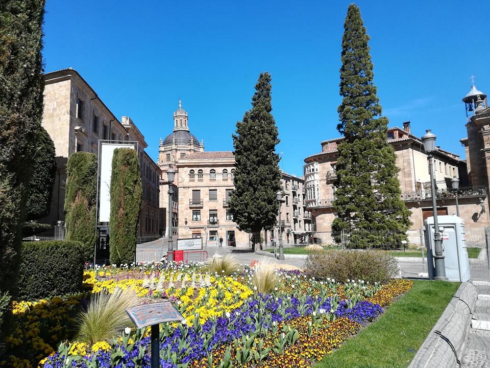 Univerzitet u Salamanki