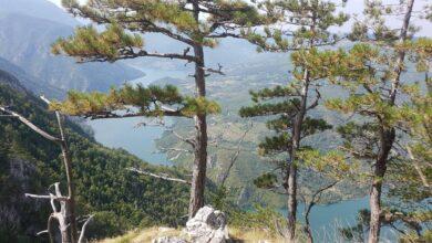Photo of TARA, kraljica planina i prirodno bogatstvo Srbije