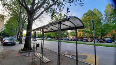 Photo of FOTO VEST: Priroda se obnavlja…i na autobuskim stajalištima