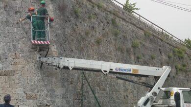 """Photo of JKP """"Mediana"""" radi na uklanjanju rastinja sa bedema Trvđave"""
