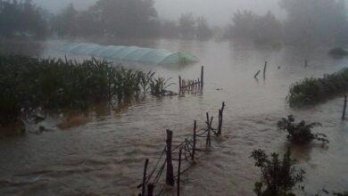 Photo of Izlila se Toplica, vanredna situacija proglašena na delu teritorije opštine Doljevac