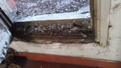 Photo of Ruglo i zaraza u centru Niša. Voda curila iz lustera, zidova, iz plafona…