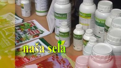 Photo of Naša sela: Načini plasmana proizvoda i skladištenja viškova