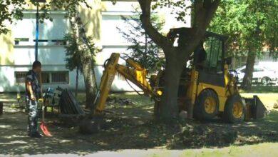 """Photo of """"Radne akcije Delijski vis"""" – odbrana zelenih površina od automobila"""