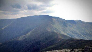 Photo of USPON NA MIDŽOR za sve ljubitelje planine i avanturizma