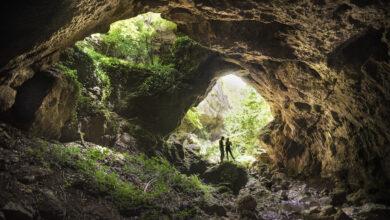 Photo of UPOZNAJTE SVRLJIG: Prošlo je 50 godina od dana izlaska Milutina Veljkovića iz pećine Samar