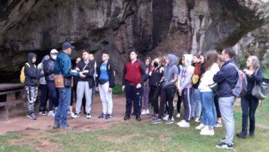 Photo of Osnovci iz Niša i Trupala učili o endemskim biljkama, papratima i mahovinama