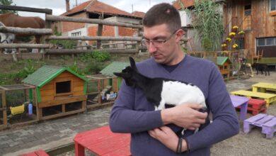 Photo of Zoo kutak: Besplatno druženje sa životinjama za nezbrinutu i decu sa zdravstvenim problemima