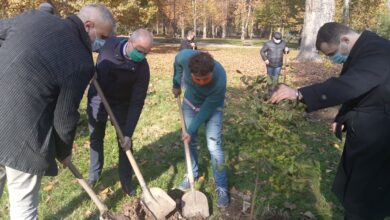 Photo of Stablo za lepši Niš – rotarijanci posadili 20 stabala u Čairu