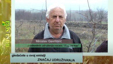 Photo of Naša sela: Koliki je značaj udruživanja voćara?
