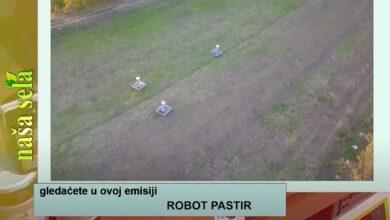 Photo of Naša sela: Robot – pastir