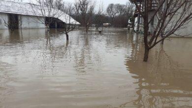 Photo of Meštani Badnjevca pod vodom, bez struje i vode za piće. Opština nudi formulare