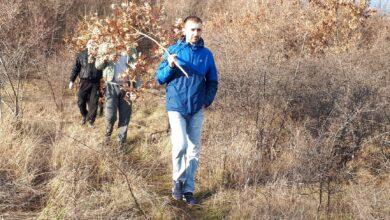 Photo of Po badnjak na pijacu ali i u šumu