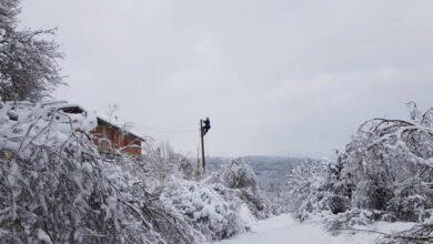 Photo of Elektromreža u Svrljigu odoleva novom snegu